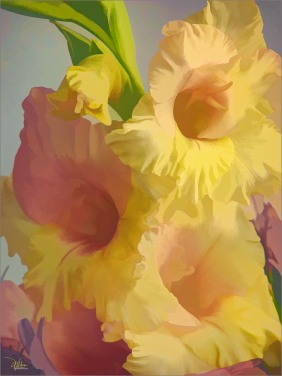 Summer Glads - Original Art and Fine Art Prints by Douglas MooreZart