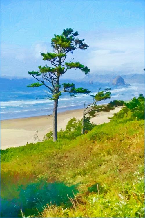 Oregon Coast 2015 - D. Moorezart, painting, copyright 2015
