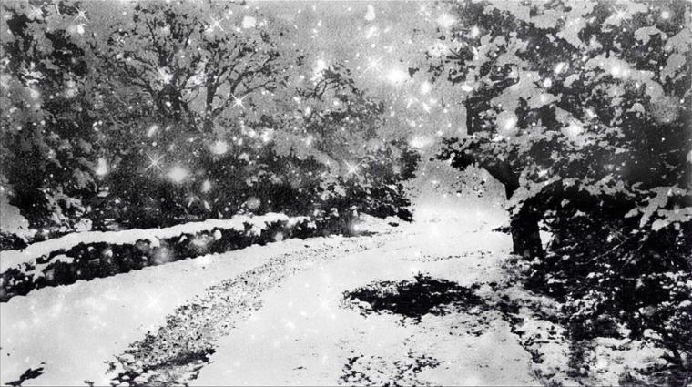 snowatdusk