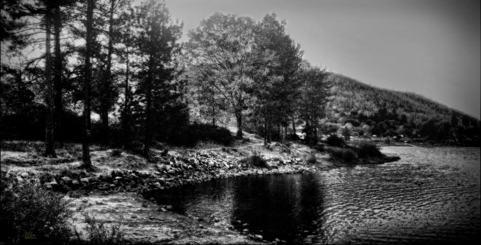 Moonlit - D. Moorezart, c 2017, all rights reserved